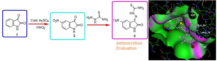 Gyrase inhibitor isatin heterocycles