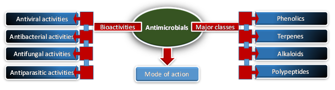 antimicrobial from plants