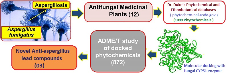 antifungal compound docking