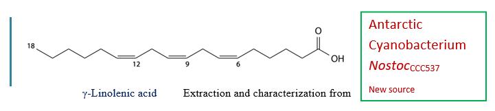 linolenic acid from blue green algae