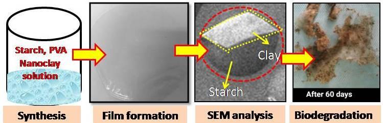 starch/PVA/nanoclay