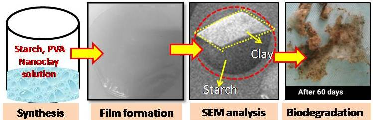 Synthesis and Biodegradation Study of Starch/PVA/Nanoclay Blend