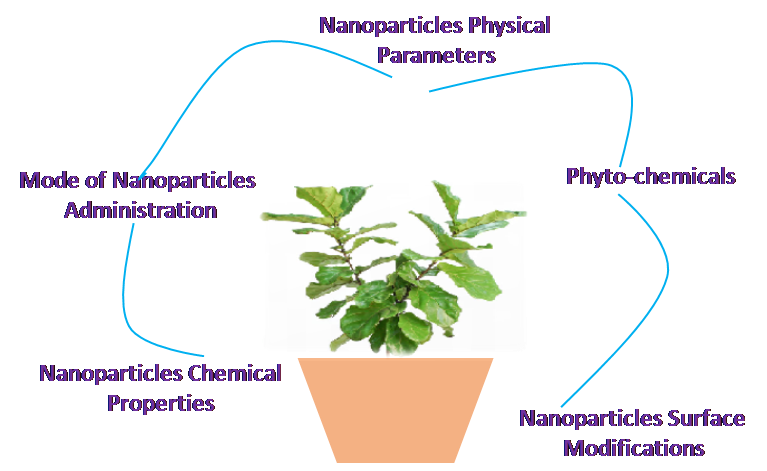 Herbal nanomedicine interactions to enhance pharmacokinetics, pharmaco-dynamics, and therapeutic index for better bioavailability and biocompatibility of herbal formulations