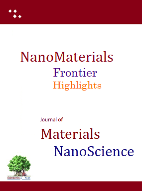 Nanomaterials Frontier Highlights