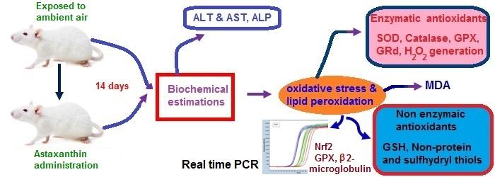 Astaxanthin biomedical use