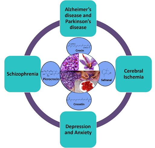 Saffron neurological disease