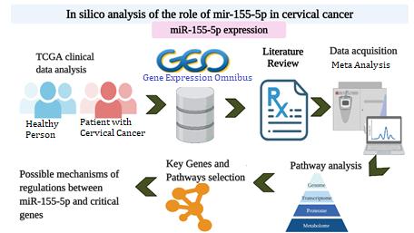 cervical cancer gene modeling