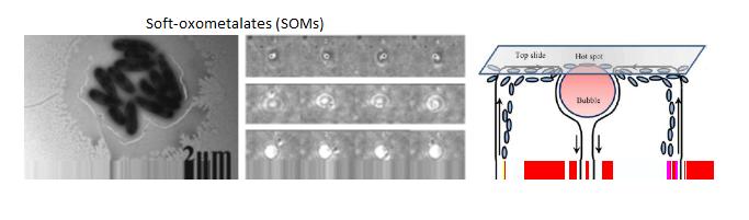 Oxometalate catalysis