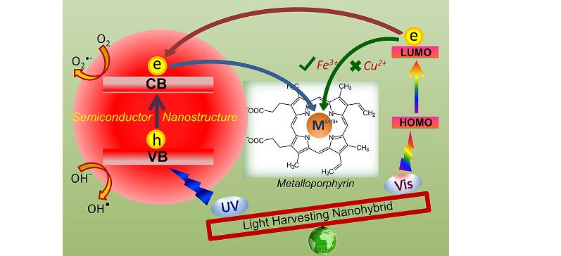 Porphyrins in solar energy