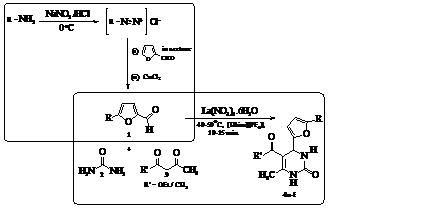 dihydropyrimidine derivatives