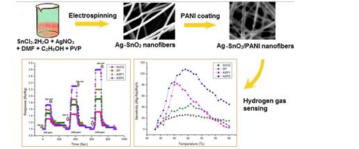 silver polyanaline nanofiber