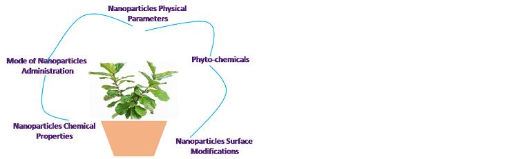herbal nanomedicine