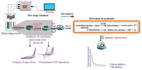 Conductive polymer nanocomposite
