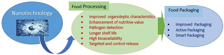 nano food nutrition